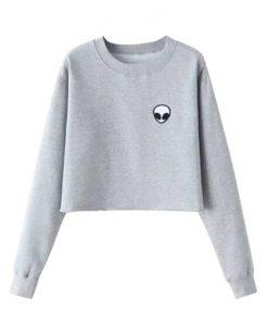 Alien logo grey Sweatshirt